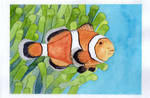 Clown fish by thurup