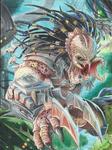 Predador - Copia