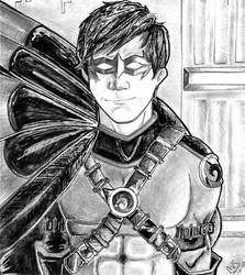 The Third Robin--Tim Drake by GodzNinja