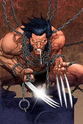 Wolverine with colors by Roderic-Rodriguez
