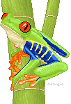 Red-Eyed Tree Frog by Daweia