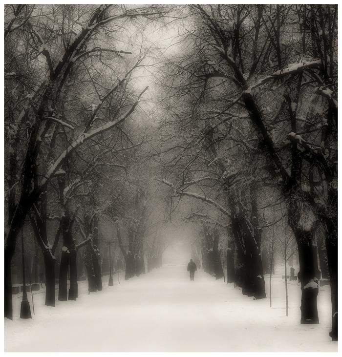 Fogman by GDALLIS