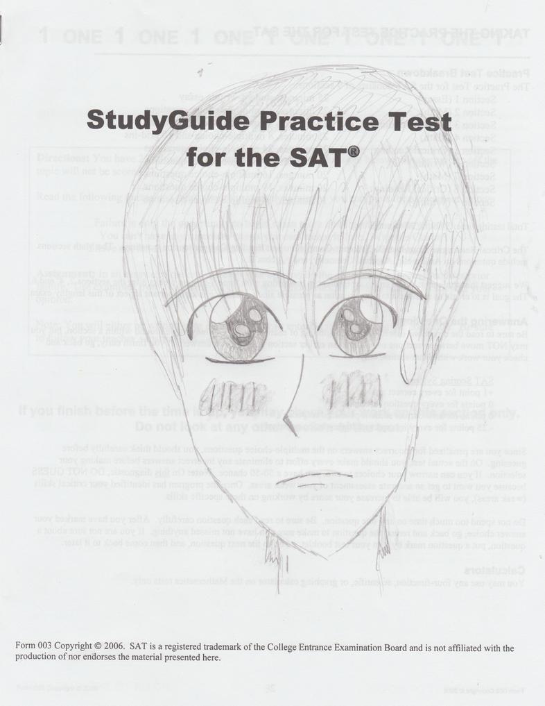 sat practice test pdf 2010