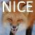 MrNiceFoxJr by ReaderNo31142