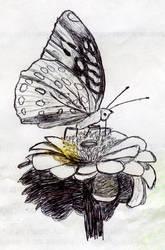 Butterfly in ink by psycholee