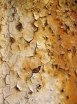 Rust texture 6