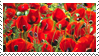 Poppies Stamp by StirFryKitty