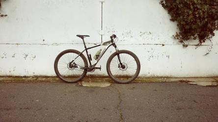 Single-Speed BRINGA by thekustomizer