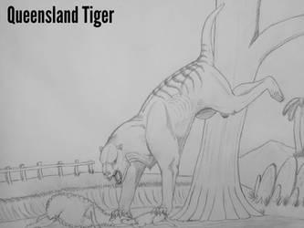 COTW#216: The Queensland Tiger by Trendorman