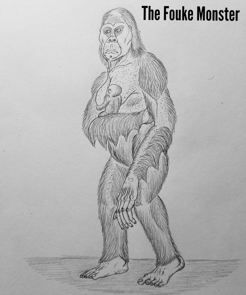 COTW#240: The Fouke Monster by Trendorman