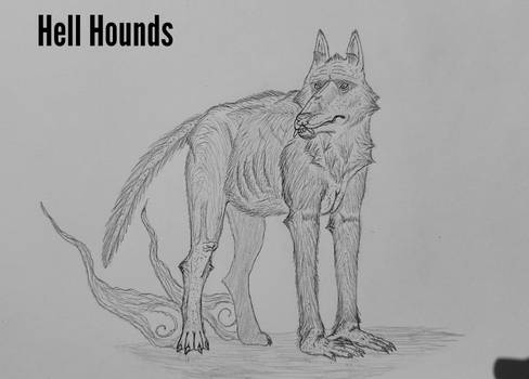 COTW#243: The Hell Hound