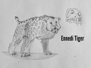 COTW#245: The Ennedi Tiger