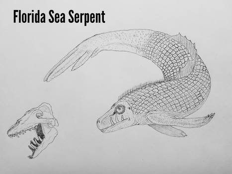COTW#267: Florida Sea Serpent