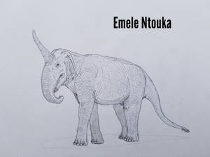 COTW#270: Emele Ntouka