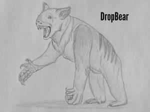 COTW#288: DropBear