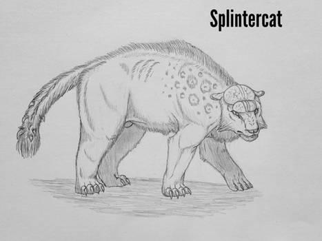 COTW#320: Splintercat