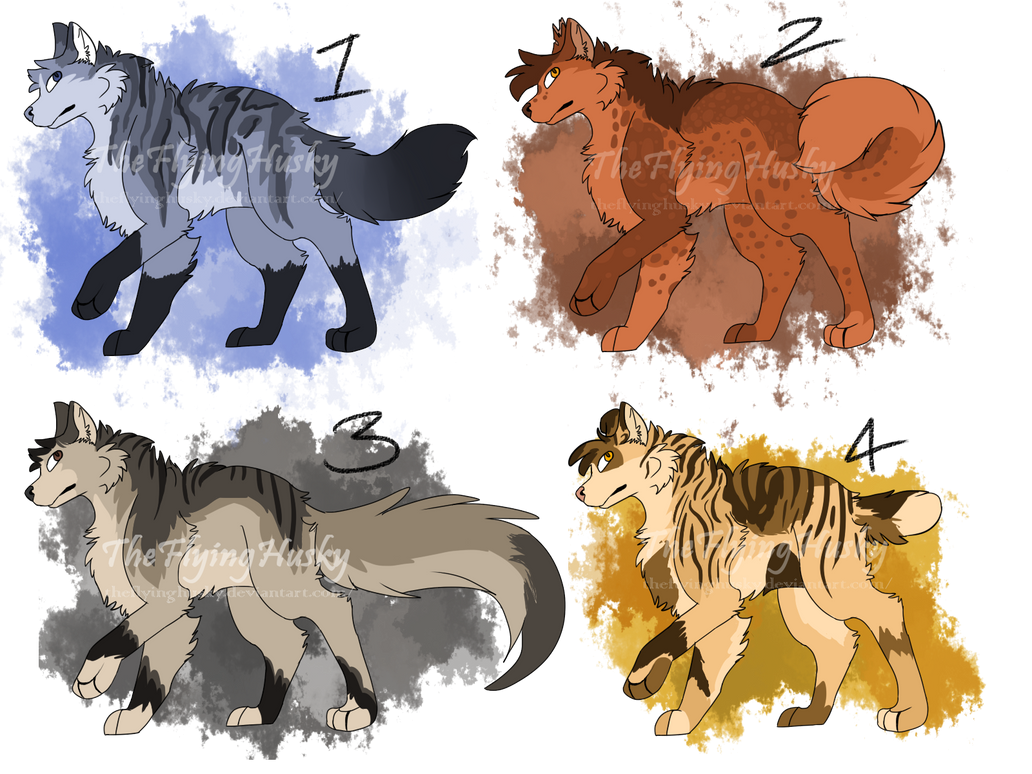 [Reduced][Open 3/4 ]Adopt batch 1 by TheFlyingHusky