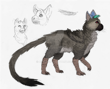 Trico sketches