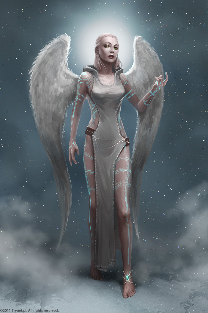 Racial Wars: Angel Creator by telthona