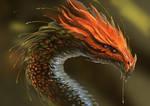 Exotique dragon