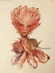 Rose Blossom by telthona