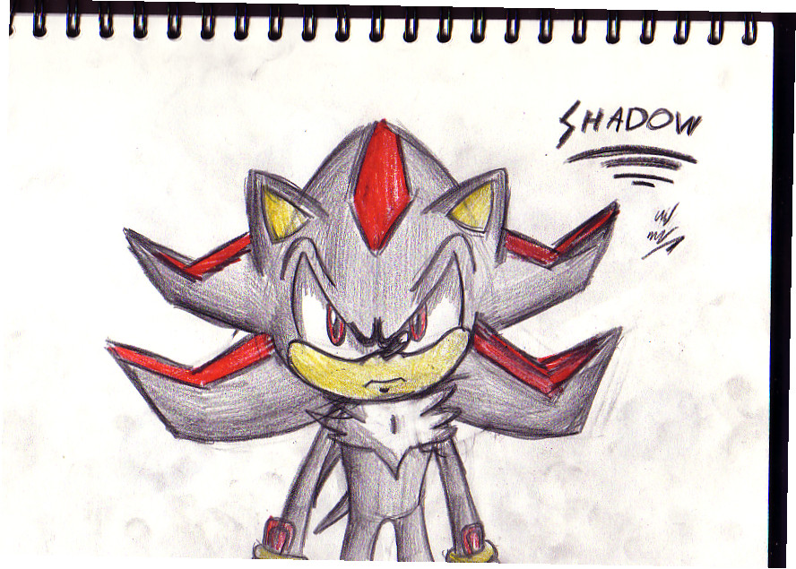 Shadow the hedgehog yet again by TheIcedWolf