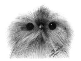Chubby Baby Owlet by NexusVIII