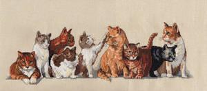 Nine Lives Kitties