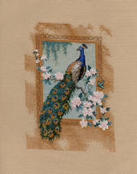 Peacock on Pink and White Flower Branch
