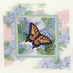 Swallowtail on Hydrangea by pinkythepink