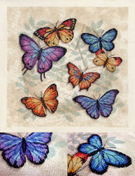 Butterfly Profusion