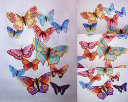 Rainbow Butterfly Extravaganza
