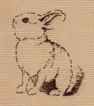 Cute Small Brown Bunny