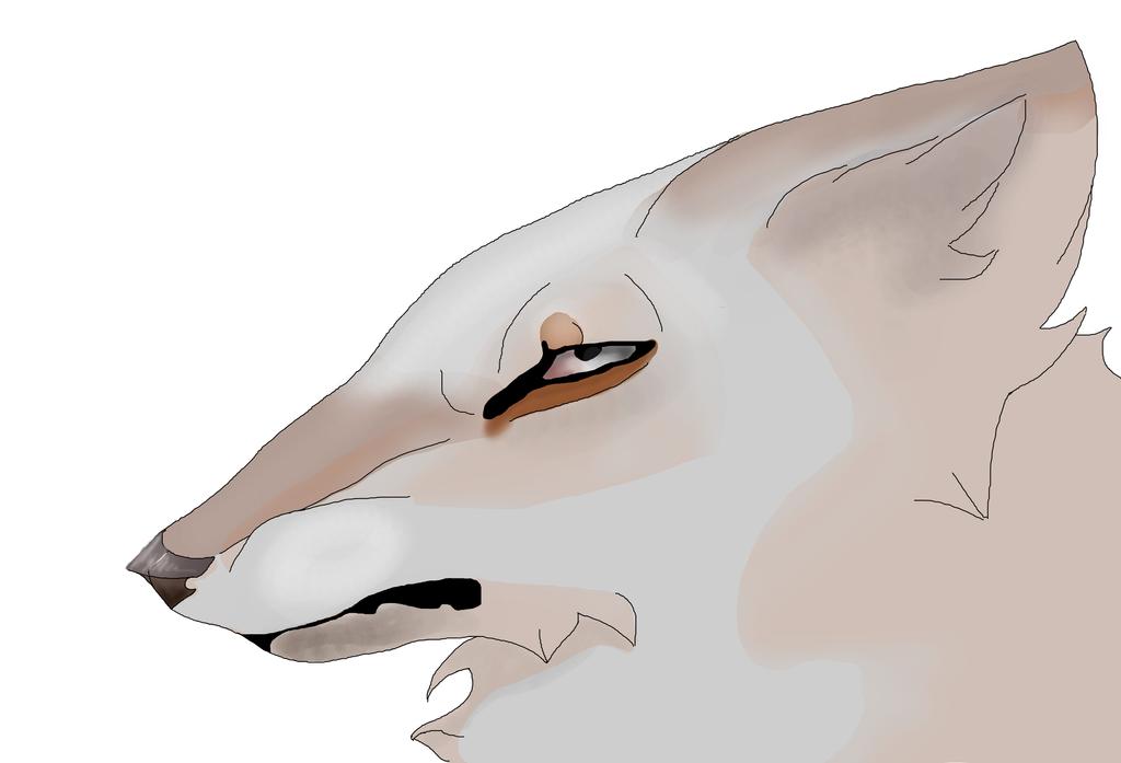 AT:Nalathebrownwolf by bassei