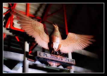 Sport Lisboa e Benfica by hfaria