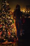 Macaroni Christmas 19 by phydeau