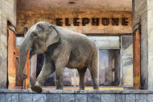 elephont by b7000