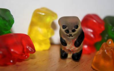 January 21 - Gummy Panda