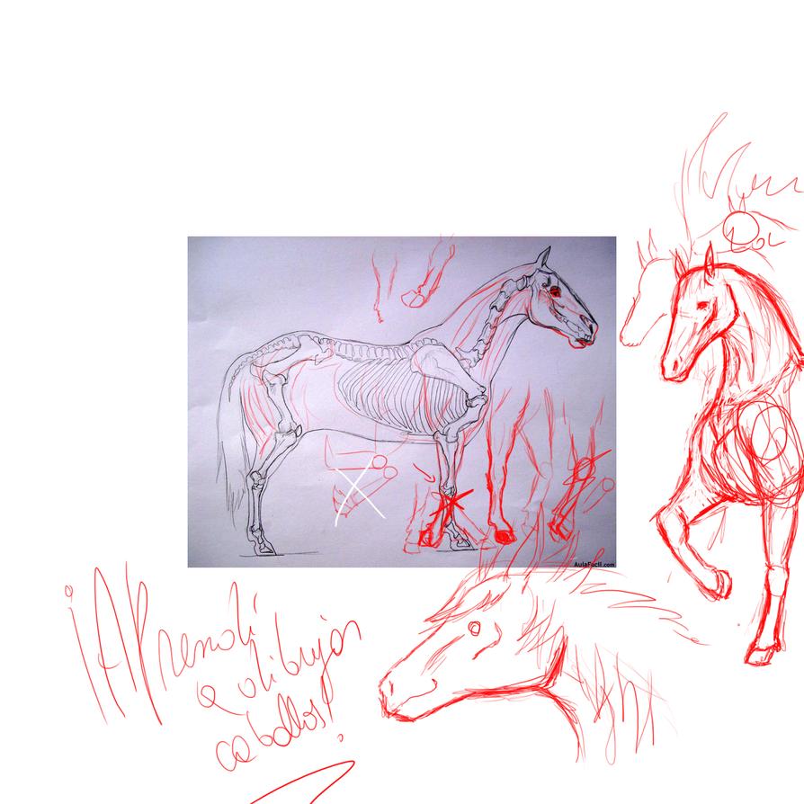 Aprendí a dibujar caballos Caballl_by_drraaggoon-d6oz4m6