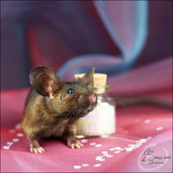 Van Raaij's Last Chance IV - Show Mouse by BanzZaii