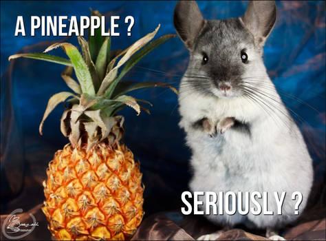 A pineapple ?