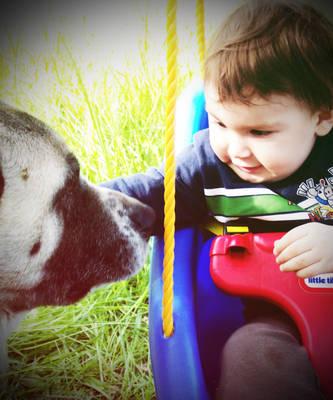 Jasper and Buddy by dismayisfrail