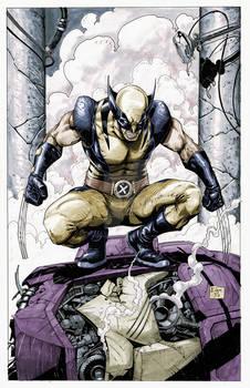 Wolverine sentinel colors