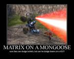 Matrix on a Mongoose