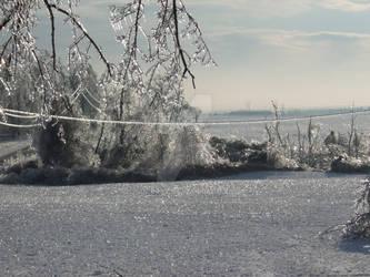 Field of Ice