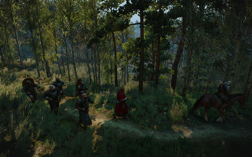 the_witcher_3_screenshot_2017_01_03___16_22_27_93_by_seancsnm-dawqy31.jpg
