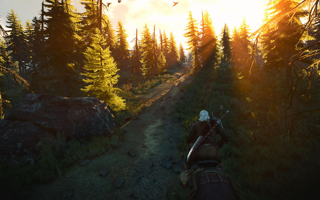 the_witcher_3_screenshot_2017_01_03___17_46_46_99_by_seancsnm-dawqy3h.jpg