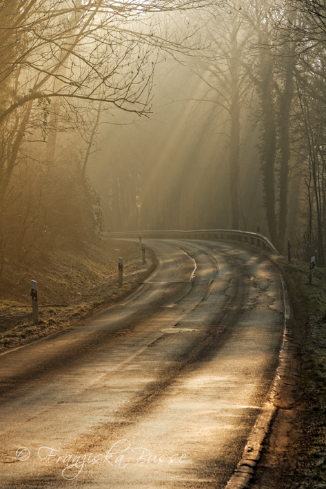 The road home IV by Gambassi