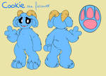 Cookie the follower