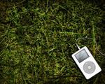 Please Listen To My Music